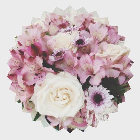 ❤️??? Flower Moda Popular Photos