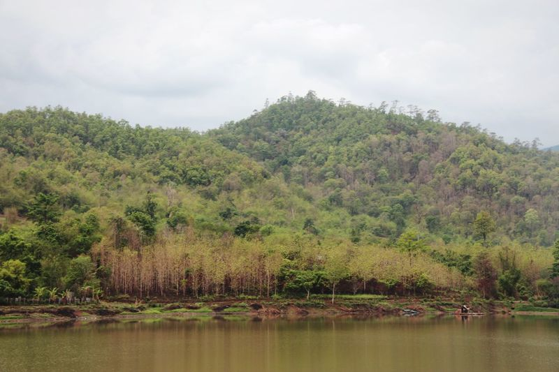 Mountains Landscape Lake View Relaxing Taking Photos Enjoying Life Reflections Forest Nature Outdoors No People Calm in North Thailand South East Asia