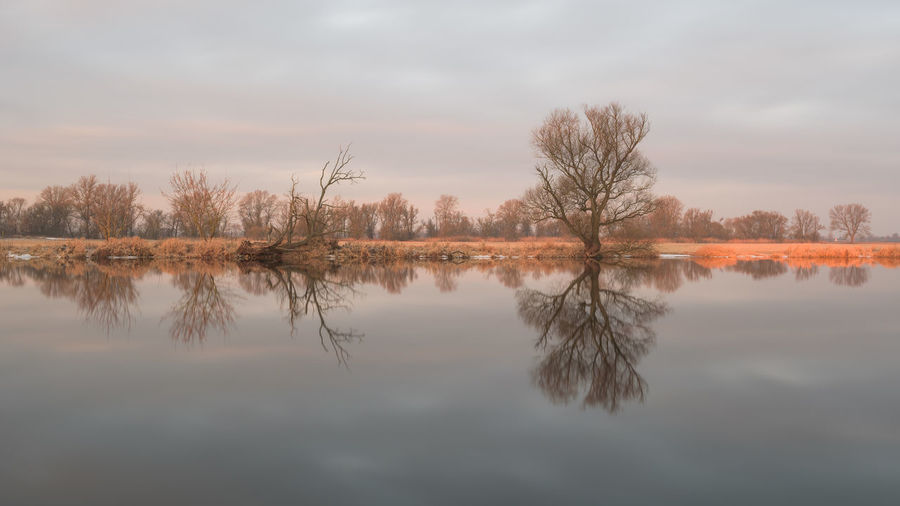 Brandenburg Havelland Germany Sachsen-Anhalt Strodehne Beauty In Nature Cloud - Sky Day Lake Nature No People Outdoors Reflection Scenics Sky Standing Water Symmetry Tranquil Scene Tranquility Tree Water Waterfront