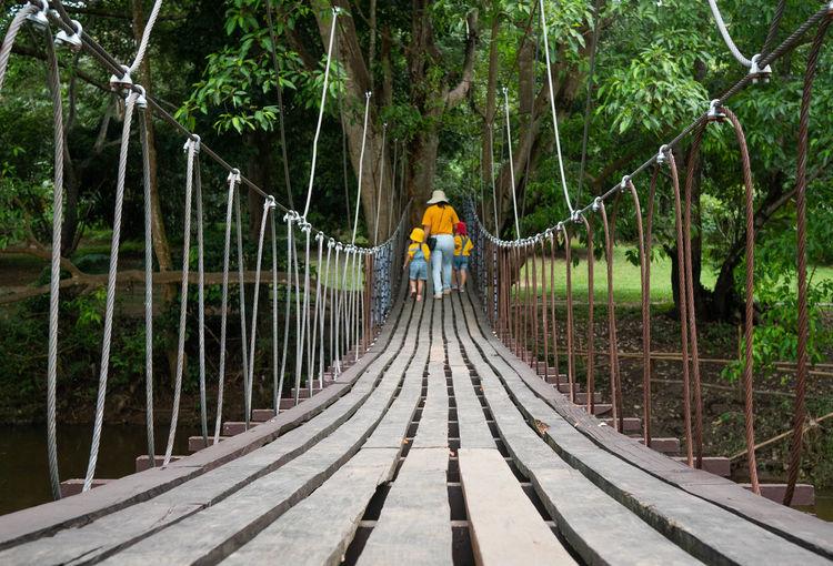 Rear view of woman on footbridge in forest