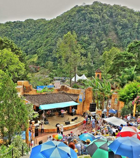 main stage amphitheater at boquete jazz and blues festival, panama Panamá Music Festival Boquete Theatre Stage Photography Traveling For The Love Of Music Natural Beauty Blues