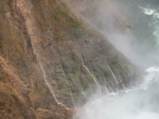 Grand Canyon of the Yellowstone, Yellowstone National Park Yellowstone National Park Nature Outdoors Grand Canyon Of The Yellowstone Mountain Scenics - Nature Beauty In Nature Water Rock No People Waterfall Day Land Non-urban Scene Environment Rock - Object Motion Solid Geology Tranquility Mountain Range Flowing Water Flowing Formation Power In Nature