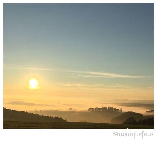 2015-12-08/ die Abendsonne am Hochrhein Monique52 The Purist (no Edit, No Filter) Himmel Natur