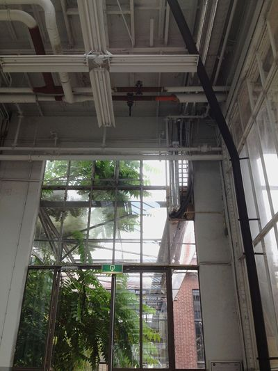 Architecture Indoors  Low Angle View Built Structure Window Day