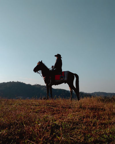 Man riding horse on field against sky