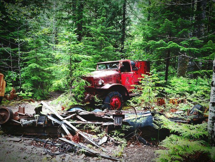 Nature Wins Navy Truck Mining