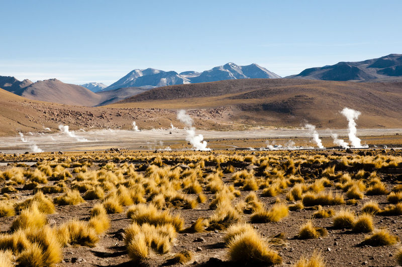 El Tatio Geyser Field - Chile Chile El Tatio Atacama Geothermal  Geyser Hot Spring Mountain San Pedro De Atacama Fresh On Market 2017