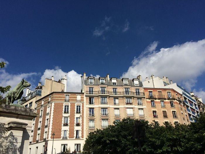 Tree Architecture Sky Low Angle View Cloud - Sky Building Exterior Day Built Structure No People Outdoors Paris Parc Brassen