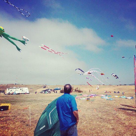 Kite Festival Berkeley