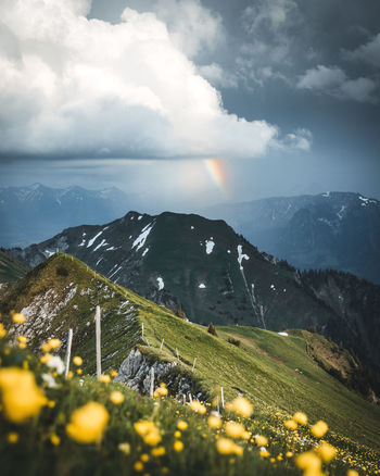 Beauty In Nature Cloud - Sky Day Environment Flower Flowering Plant Gantrisch Land Landscape Mountain Mountain Peak Mountain Range Nature No People Outdoors Plant Rainbow Scenics - Nature Sky Sunlight Switzerland Thewanderco Tranquil Scene Tranquility