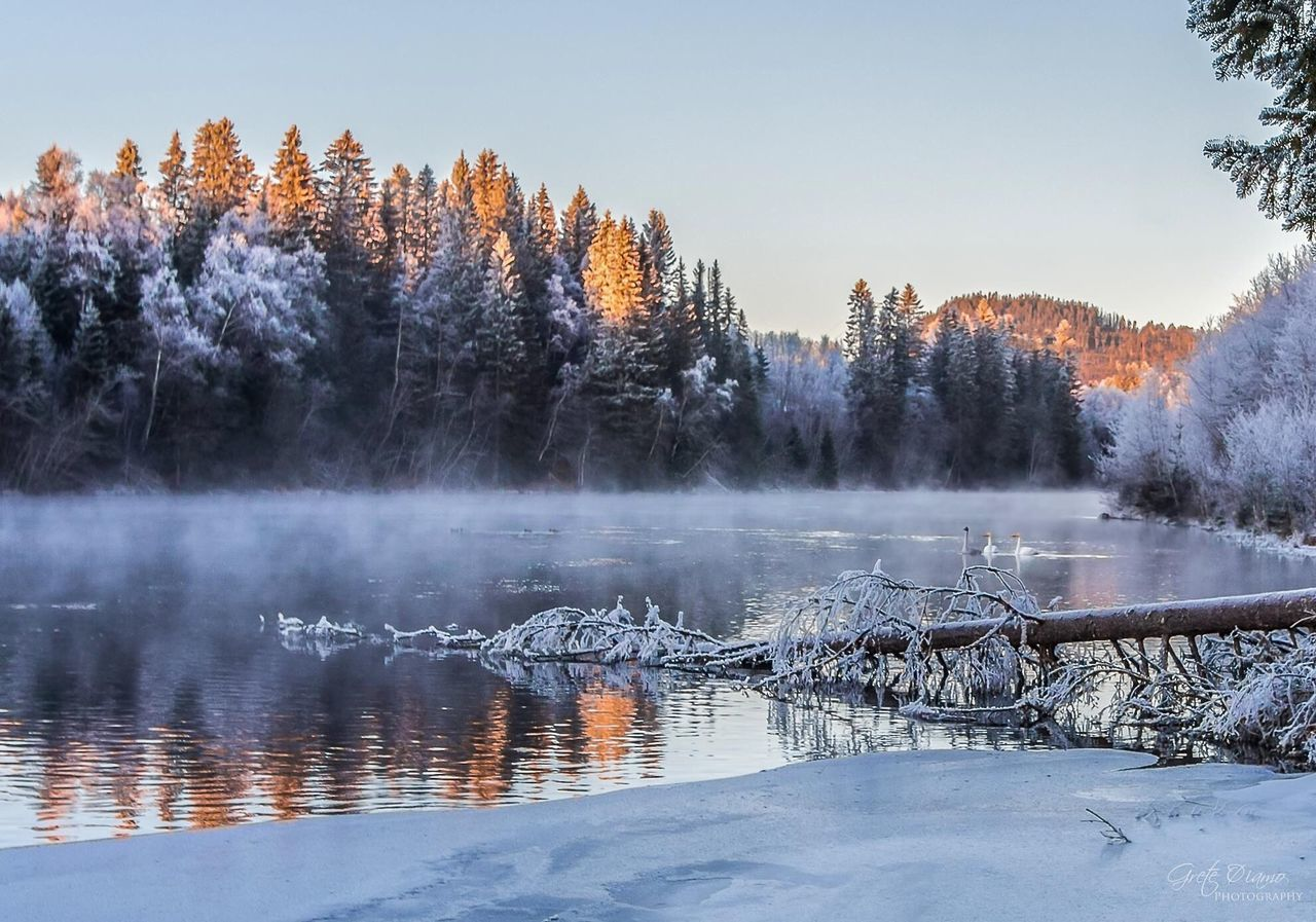 nature, winter, tree, beauty in nature, tranquil scene, tranquility, water, lake, cold temperature, scenics, no people, outdoors, remote, reflection, snow, day, sky, landscape, clear sky