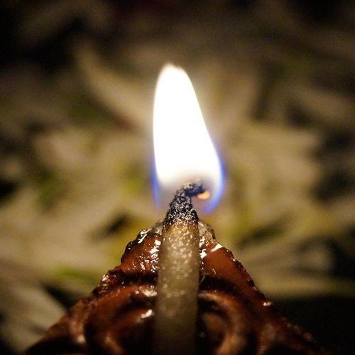 DSLR Click Diwali Special random no edit vsco beautiful colourful light up your world wow prodip flowers combined FollowForFollow LikeForlike