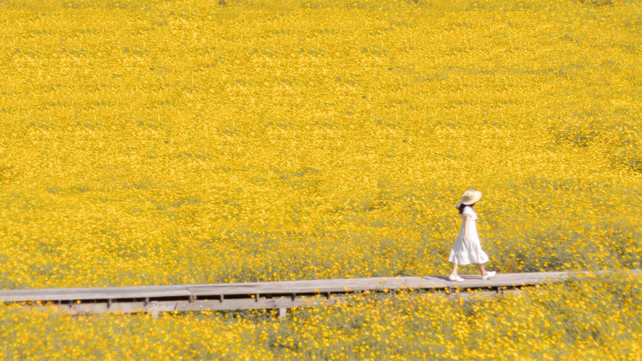 Woman standing on yellow flowering plants during autumn