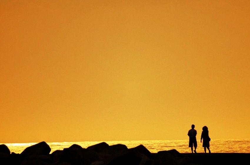 いつかの夕景 Sunset Sunset_collection Sunset Lovers 夕暮れふぇち マーマレード色の空 Happy Moment♥ 乙女部 黄昏隊 楽しみ隊 Silhouette_collection Silhouette Lovely Nature いつもの場所 Kagoshima https://youtu.be/0353jrboqOc 今日もお疲れさまでした☺✋