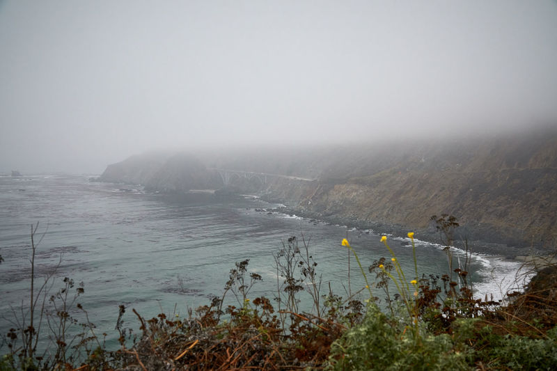 Foggy Highway 1 at the californian coast Fog Water Nature Sky Scenics - Nature Beauty In Nature Tranquility Tranquil Scene Environment Plant No People Land Mountain Day Landscape Sea Copy Space Outdoors Pollution Pacific Ocean Pacific Coast Highway Highway Leisure Time California Dreamin California Coast