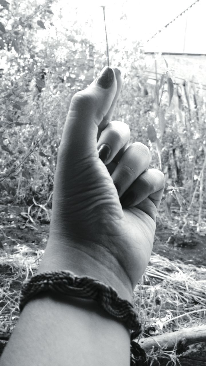 one person, human hand, real people, human body part, day, close-up, outdoors, grass, low section, people