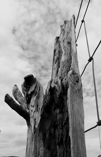 Low angle view of old wooden post against sky