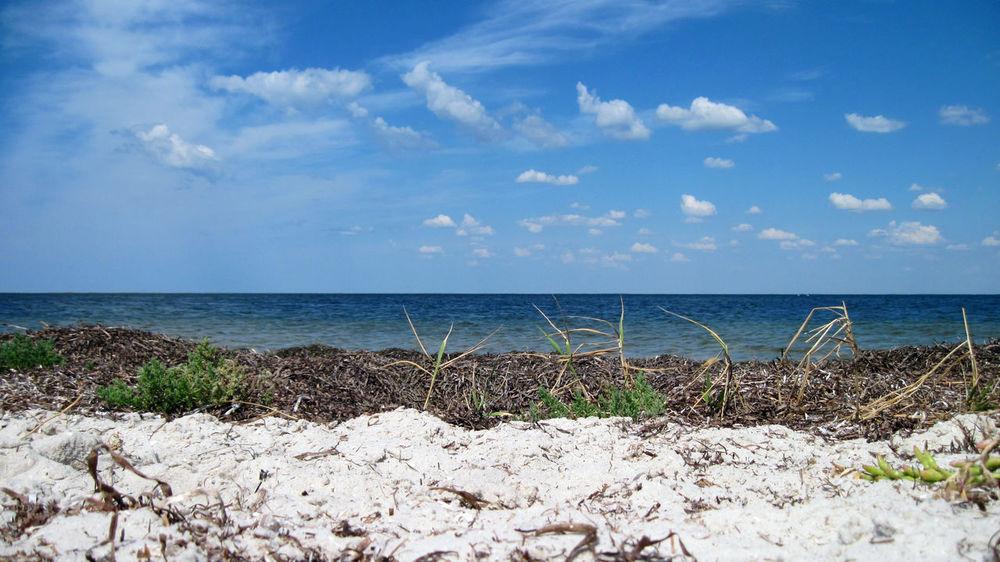 Sea Beach Ukraine Rest Restinpeace Sky