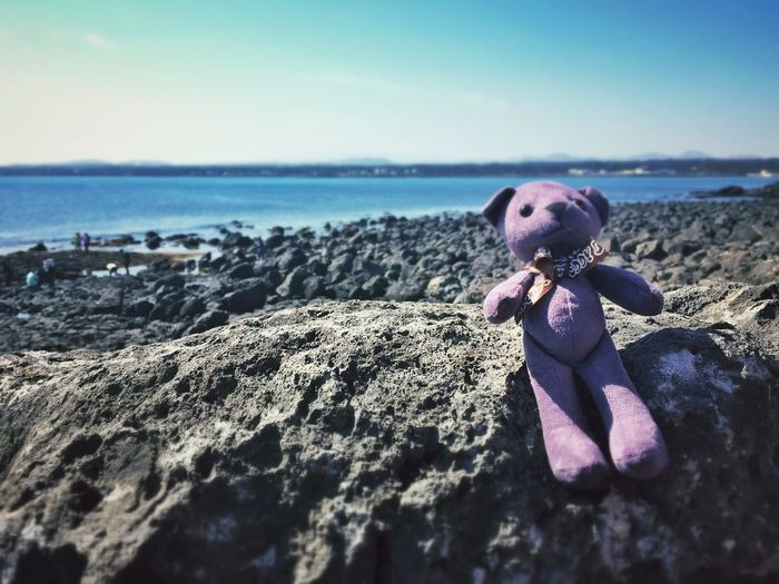 good night teddy Teddy Goodnight Sunshine Bear Beach Korea