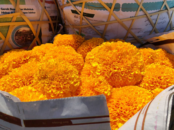 High angle view of yellow flowering plants at market stall
