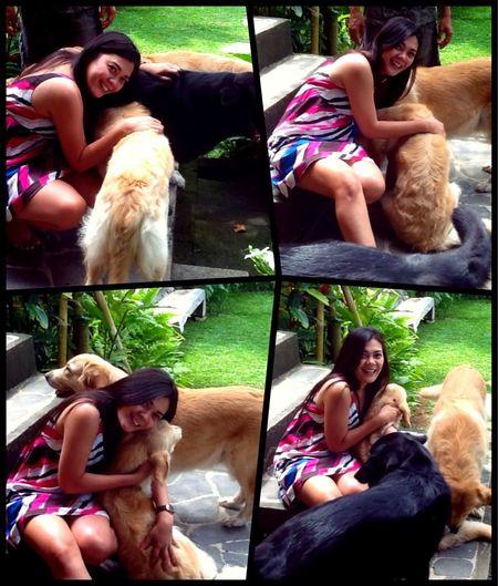 Doggie Love Dog Dogoftheday