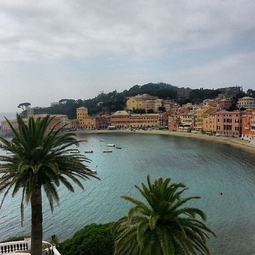 Amazing Bay of Silence in Sestrilevante Instaitalia Italia Italy Liguria Baia Sea Beach Beautiful Landscape Travel Trip Art Tagsforlikes Travelingram Thebest_capture Travelgram Traveling Travelling Instapassport Instatravel Instasea Instalove Instapic Instanature instadaily instagood globe_travel_ onelove photooftheday