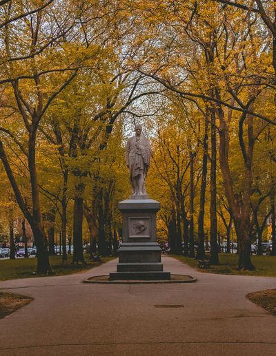 Statue in park during autumn