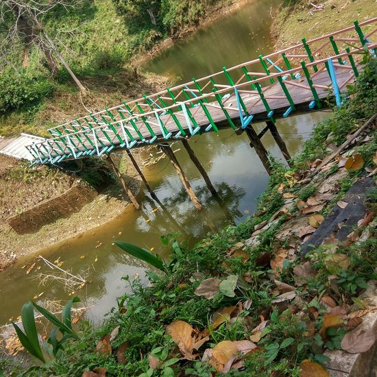 Baramura park in agartala Bridge Forest Photography High Angle View Water Outdoors Beauty In Nature No People Plant Nature Day Tree Growth Tripura Art Is Everywhere