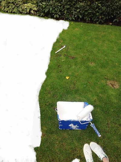 Getting Creative Painting My Grass!...White Out Of The Ordinary Being Creative Outside Having Fun In My Garden Make Over Like The Green...loving The White