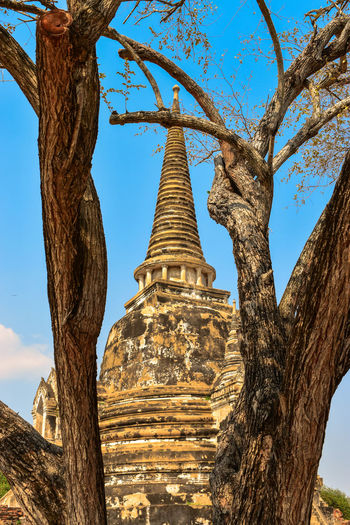 Nice Place Achitecture Amazing Ancient Biggest Buddha Building Colorful Cultures Day Good Great Looking Nice No People Outdoors Place Religion Temple Thailand Travel Tree View