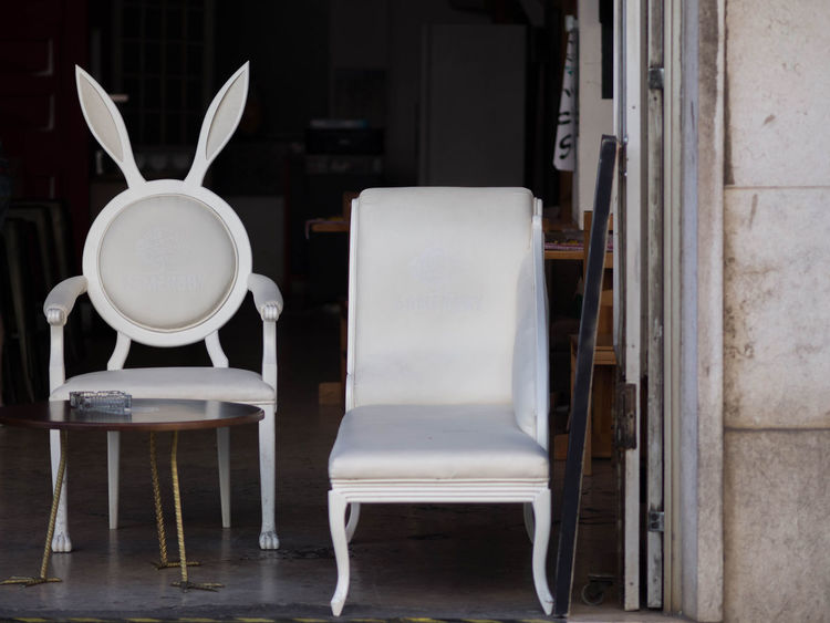 Designer Furniture Chair No People Rabbit Sofa White White Furniture