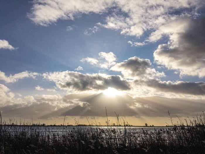 Dutch sky above