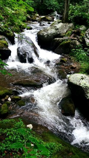 Water No People Nature Outdoors River Tranquility Beauty In Nature Day Forest Waterfall Tree Rocks, Boulder, Stone, Pebble Rocks In Water Rocks And Water Water Rocks Waterscape Scenics Beauty In Nature Motion Rocks In River Waterways Waterway