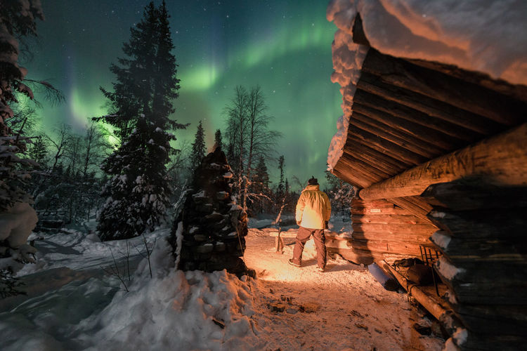 Rear view of man by trees on snow against aurora borealis