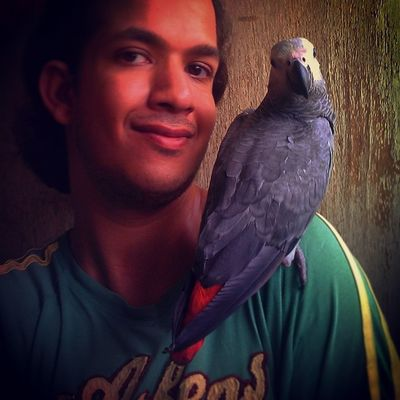 AfricanGray Posing Selfie Selfiewithpets instapets parrots