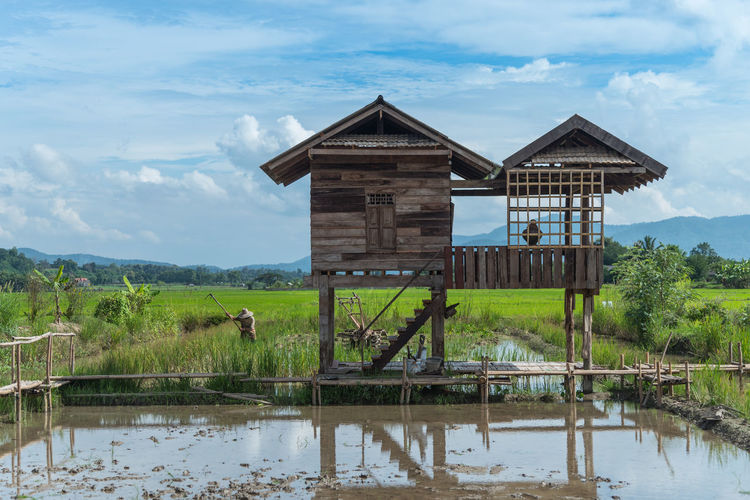 Wooden farmer hut in the rice field. Chiang Mai, Thailand. Agriculture Agriculture Farm Asian  Chiang Mai Chiang Mai | Thailand Chiangmai Farmer Rice Rice Paddy Thailand Wooden Hut Agricultural Field Agriculture Photography Cloud - Sky Fresh Hut Plant Rice Field Ricefield Shelter