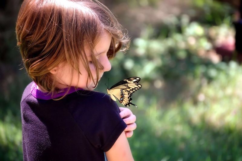 Rear View Of Girl Looking At Butterfly On Shoulder