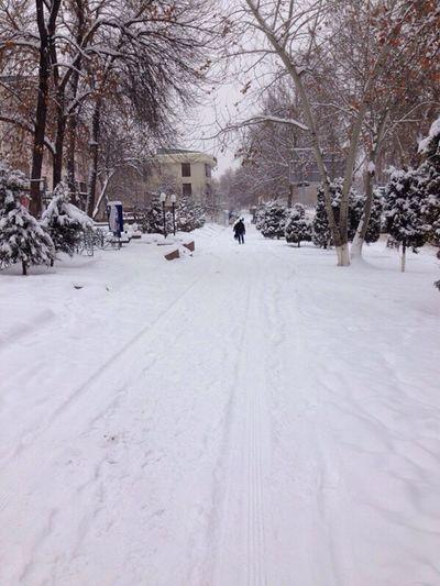 Let it snow ❄️ Snow White Winter Time Bye Winter