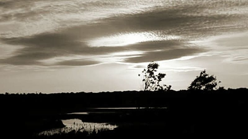 Relaxing Taking Photos Light And Shadow Black & White Black And White Collection  Nature_collection Beach Photography Cloud_collection  Clouds And Sky Sunset_collection No People Tranquility Tranquil Scene Nature Photography Harkness State Park Waterford, CT United States