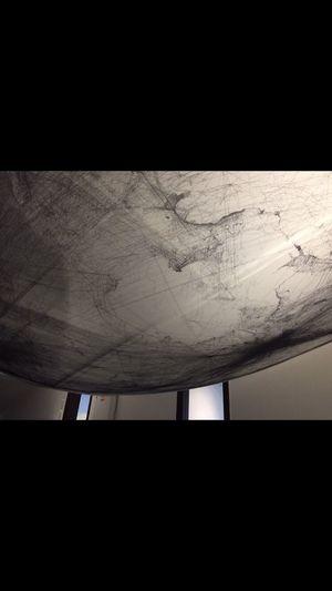 Art World Design Biennale Arewehuman