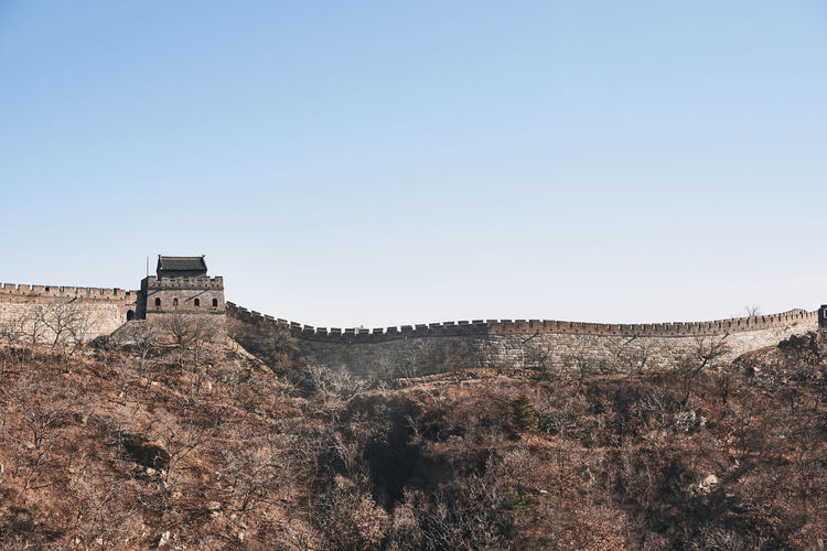 Great Wall Of China Sky Clear Sky Built Structure Architecture Copy Space Building Exterior History Nature No People The Past Day Tree Blue Travel Destinations Fort Low Angle View Plant Land Building Travel Outdoors Wonder Of The World Tourism Tower