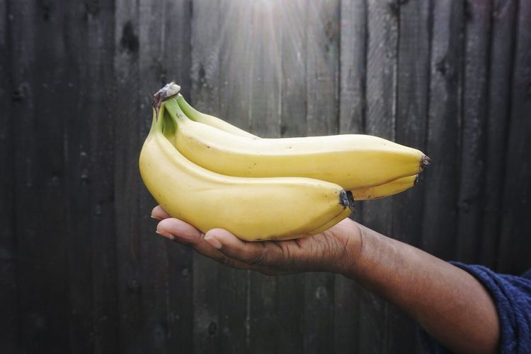 Close-up of hand holding bananas