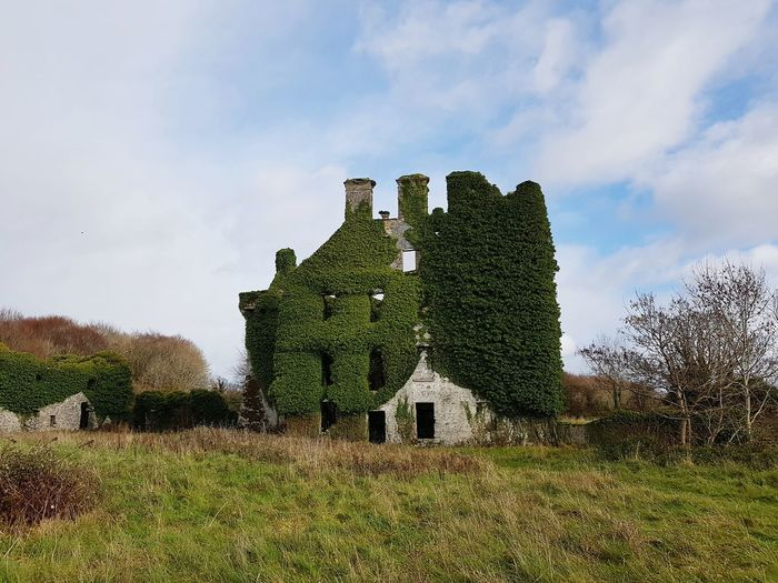 Ruine in galway