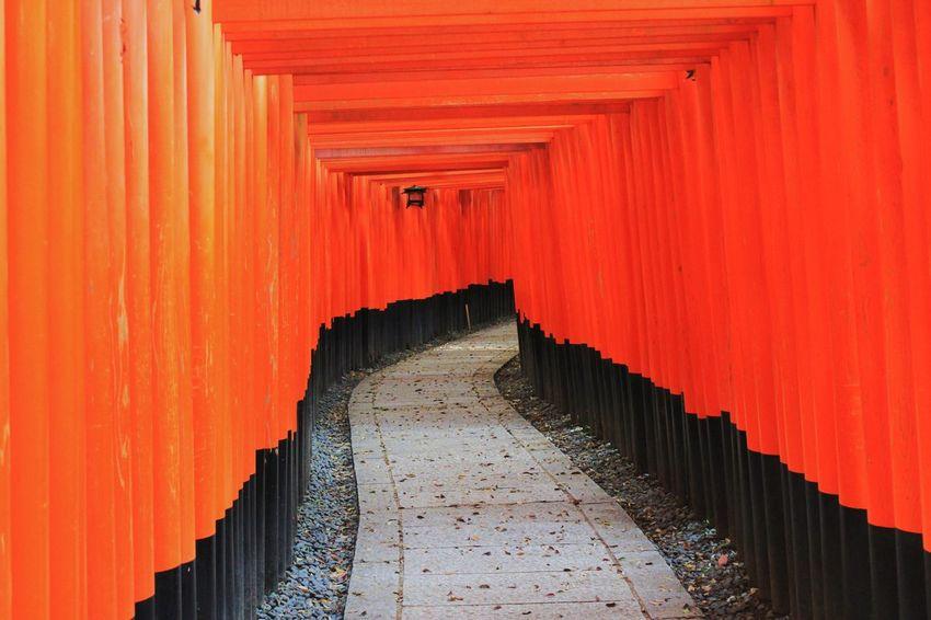 Japan Kyoto Fushimiinari Senbondorii 日本 京都 伏見稲荷 千本鳥居