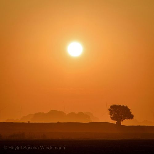 Sunrise Sun Sky