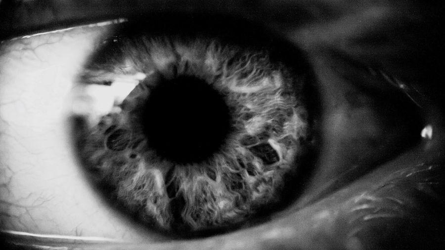 My friend Joey has a beautiful eye. Thank you Joey! Macro Eye Blackandwhite Iris Upclose  Humaneye