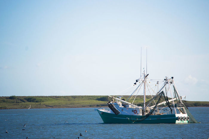 Texas Gulf Coast shrimp boat. Beauty In Nature Boat Channel Day Mode Of Transport Nature Nautical Vessel No People Ocean Outdoors Sailing Sailing Ship Sea Sea Birds Seagulls Shrimp Shrimp Boat Sky Transportation Water