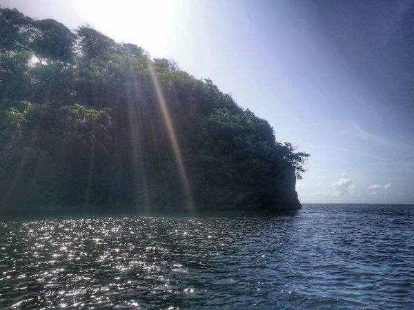 Water Sunbeam Sun No People Outdoor Pursuit Beauty In Nature Sunlight Nature Sea Outdoors Scenics Travel Destinations Sky Day Refraction Tree UnderSea Humpback Whale Trinidad Trinidad And Tobago Tranquil Scene Tranquility Beauty In Nature Nature