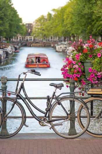 Amsterdam Canal Cruise Netherlands Architecture Bicycle Bridge Building Exterior Built Structure Canal Canal Houses Car City Day Dutch Architecture Dutch Houses Flower Flowering Plant Focus On Foreground Herengracht Holland Incidental People Mode Of Transportation Outdoors Stationary Tourism