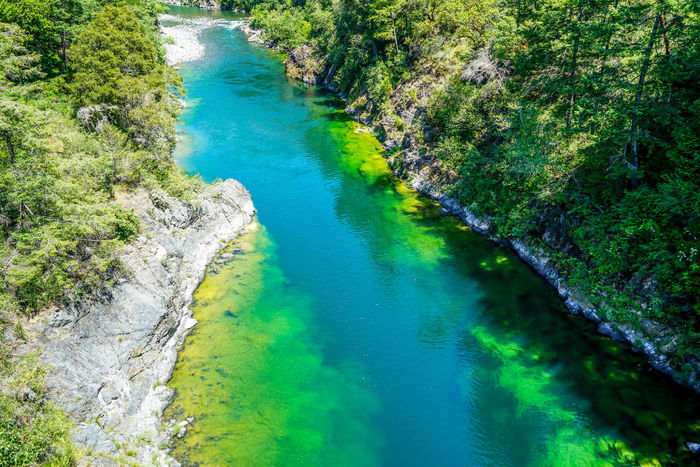 The stunningly clear waters of Redwood Creek that runs through Redwood National Park. Clear Sky Creek Nature Trees View Blue Sky Butterfly Day Evergreens Landscape Outdoors Park Redwood Redwood Creek Redwood National Park Rocks Scenics Sunshine Valley Water